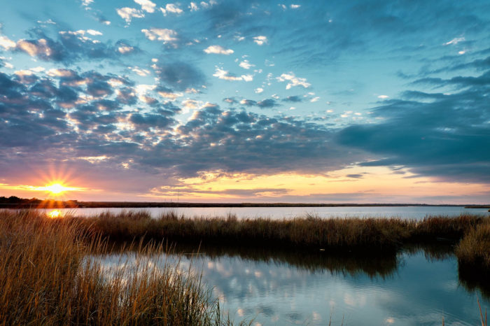 21 Truly Stunning Photos That Will Make You Homesick For Louisiana